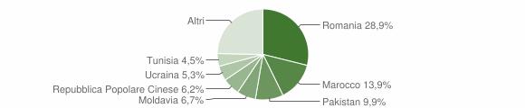 Grafico cittadinanza stranieri - Budrio 2019