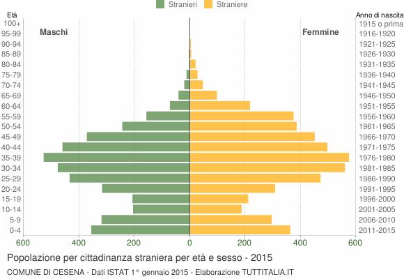 Grafico cittadini stranieri - Cesena 2015