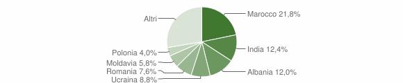 Grafico cittadinanza stranieri - Gattatico 2010