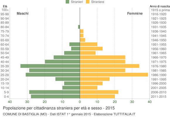 Grafico cittadini stranieri - Bastiglia 2015