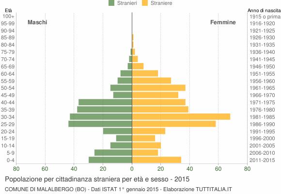 Grafico cittadini stranieri - Malalbergo 2015
