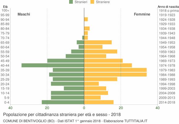 Grafico cittadini stranieri - Bentivoglio 2018