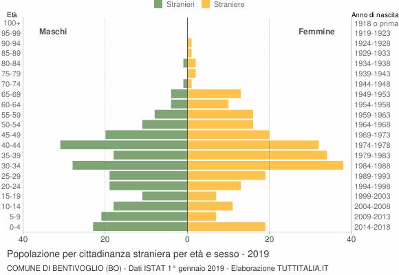 Grafico cittadini stranieri - Bentivoglio 2019