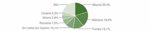 Grafico cittadinanza stranieri - Vignola 2019