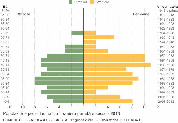 Grafico cittadini stranieri - Dovadola 2013