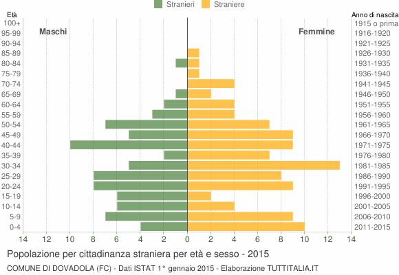 Grafico cittadini stranieri - Dovadola 2015