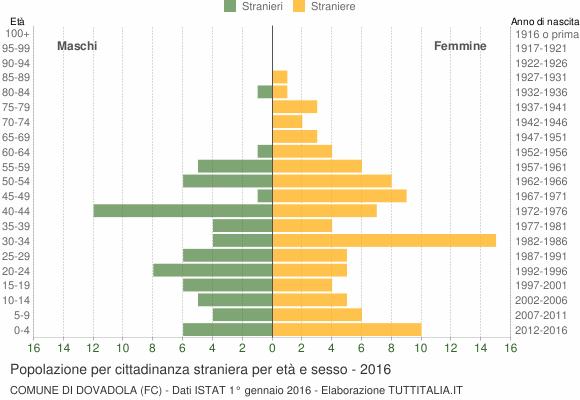Grafico cittadini stranieri - Dovadola 2016
