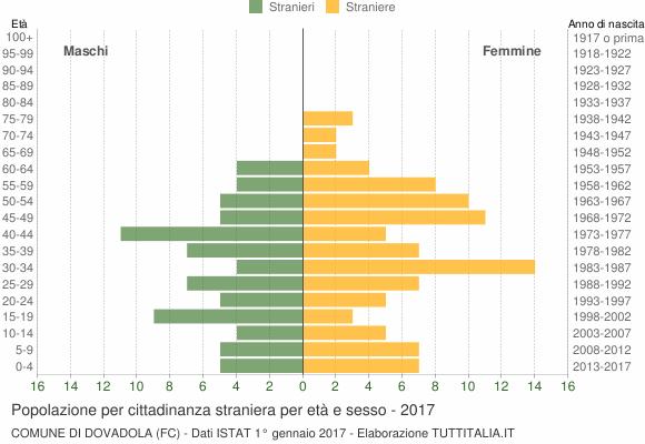 Grafico cittadini stranieri - Dovadola 2017