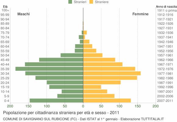 Grafico cittadini stranieri - Savignano sul Rubicone 2011