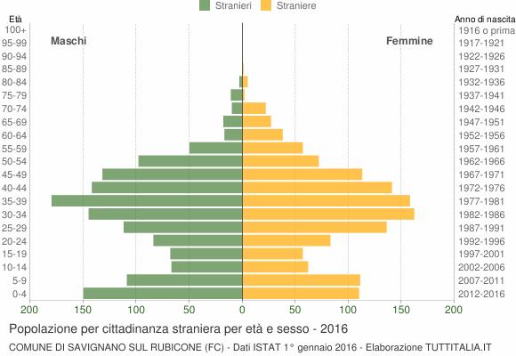 Grafico cittadini stranieri - Savignano sul Rubicone 2016