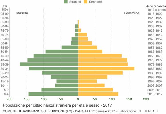 Grafico cittadini stranieri - Savignano sul Rubicone 2017