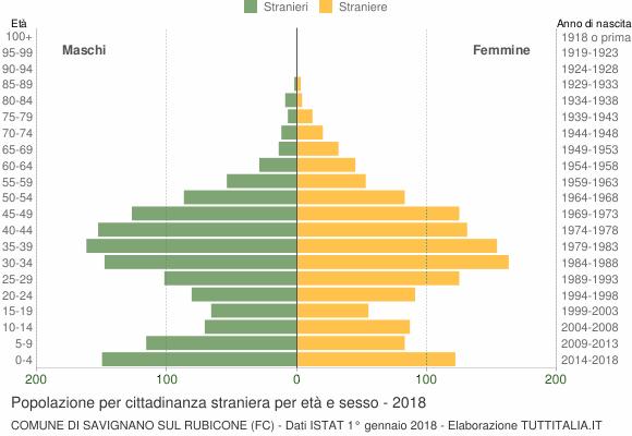 Grafico cittadini stranieri - Savignano sul Rubicone 2018