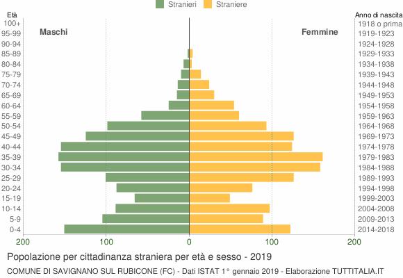 Grafico cittadini stranieri - Savignano sul Rubicone 2019