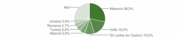 Grafico cittadinanza stranieri - Castelnovo di Sotto 2010