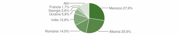 Grafico cittadinanza stranieri - Carpineti 2013