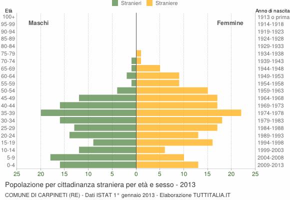 Grafico cittadini stranieri - Carpineti 2013