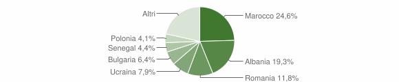 Grafico cittadinanza stranieri - Mercato Saraceno 2009
