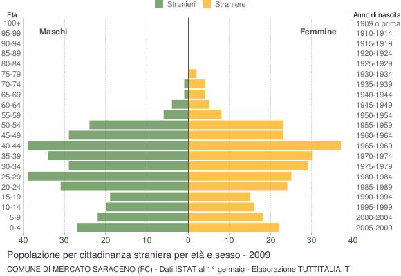 Grafico cittadini stranieri - Mercato Saraceno 2009