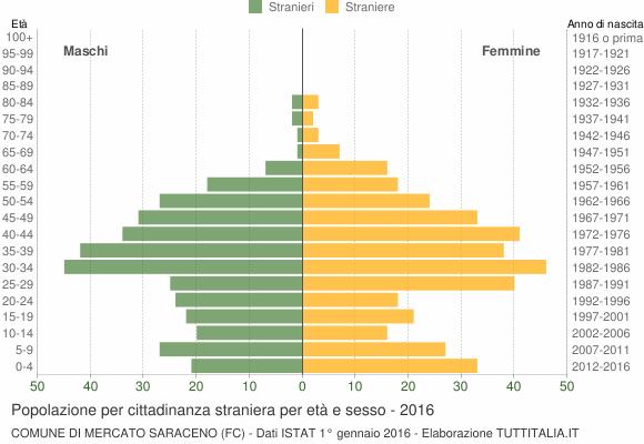 Grafico cittadini stranieri - Mercato Saraceno 2016