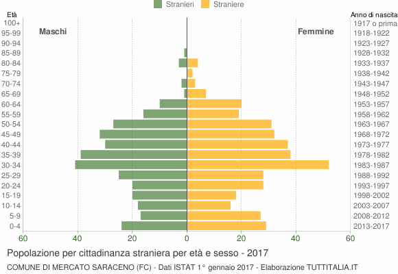 Grafico cittadini stranieri - Mercato Saraceno 2017