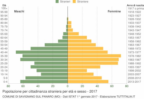 Grafico cittadini stranieri - Savignano sul Panaro 2017