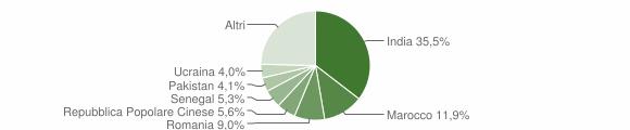 Grafico cittadinanza stranieri - Poviglio 2019