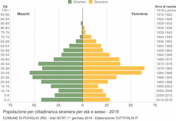 Grafico cittadini stranieri - Poviglio 2019