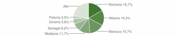 Grafico cittadinanza stranieri - Faenza 2010