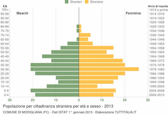 Grafico cittadini stranieri - Modigliana 2013