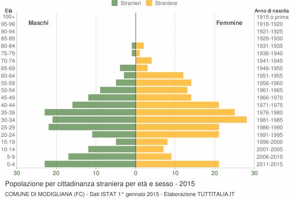 Grafico cittadini stranieri - Modigliana 2015