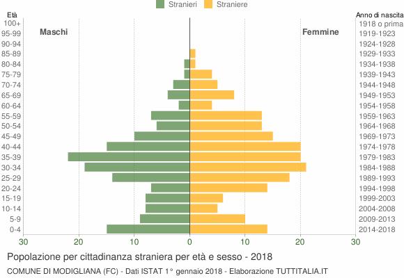 Grafico cittadini stranieri - Modigliana 2018