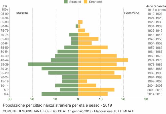 Grafico cittadini stranieri - Modigliana 2019