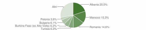 Grafico cittadinanza stranieri - Bertinoro 2008