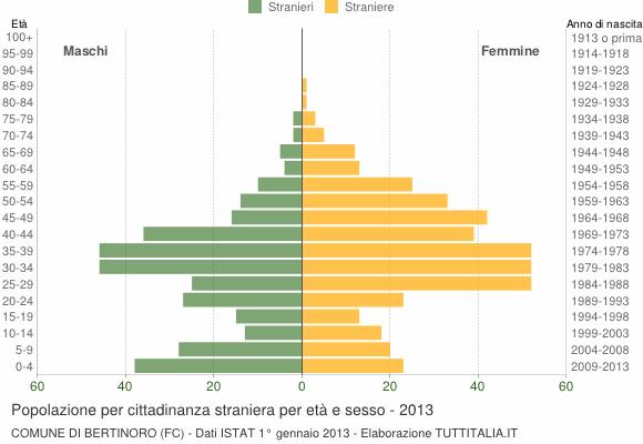 Grafico cittadini stranieri - Bertinoro 2013