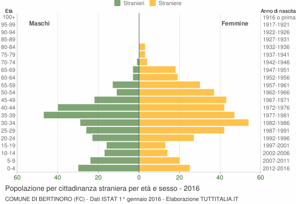 Grafico cittadini stranieri - Bertinoro 2016