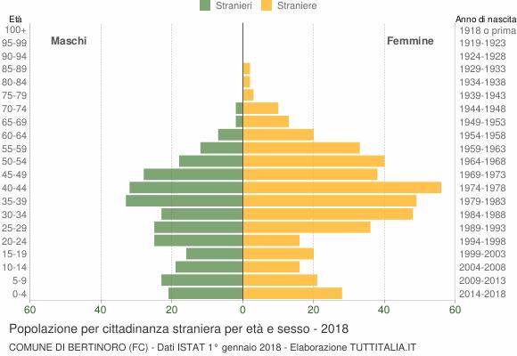 Grafico cittadini stranieri - Bertinoro 2018