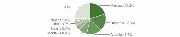 Grafico cittadinanza stranieri - Medesano 2015