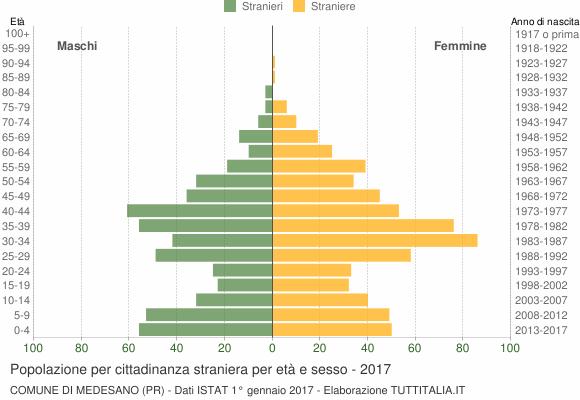 Grafico cittadini stranieri - Medesano 2017