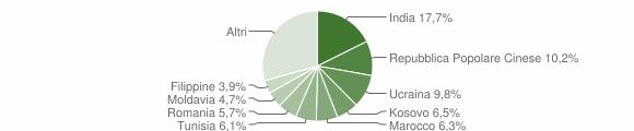 Grafico cittadinanza stranieri - Albinea 2010