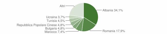 Grafico cittadinanza stranieri - Cesenatico 2008