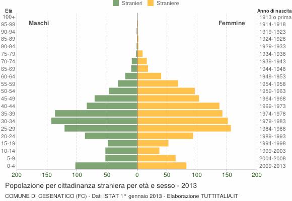Grafico cittadini stranieri - Cesenatico 2013