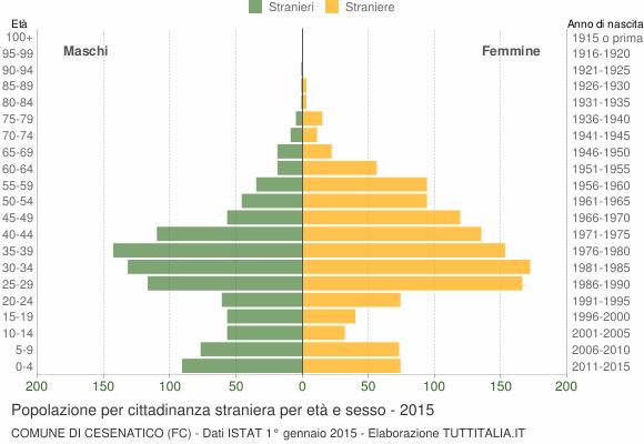 Grafico cittadini stranieri - Cesenatico 2015