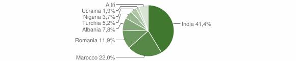 Grafico cittadinanza stranieri - Villanova sull'Arda 2015