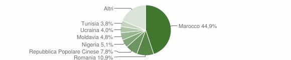 Grafico cittadinanza stranieri - Finale Emilia 2011