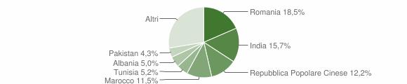 Grafico cittadinanza stranieri - Soliera 2019