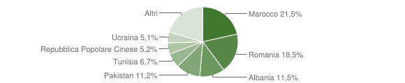 Grafico cittadinanza stranieri - San Pietro in Casale 2013