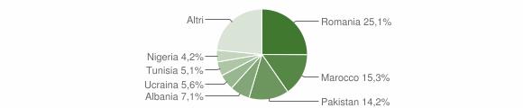 Grafico cittadinanza stranieri - San Pietro in Casale 2019