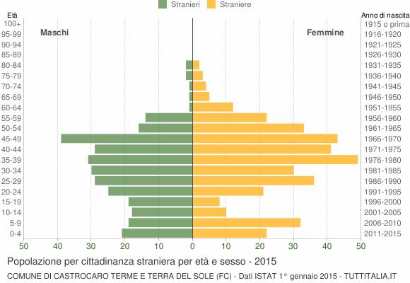 Grafico cittadini stranieri - Castrocaro Terme e Terra del Sole 2015