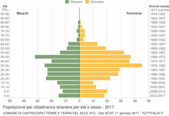 Grafico cittadini stranieri - Castrocaro Terme e Terra del Sole 2017