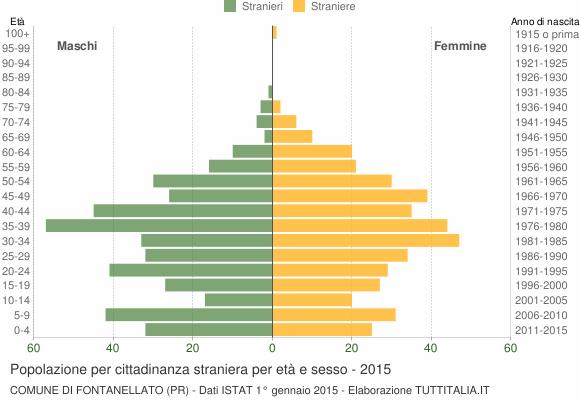 Grafico cittadini stranieri - Fontanellato 2015